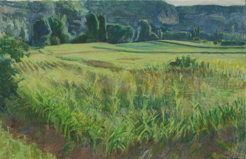 maize_field_100-65_small25