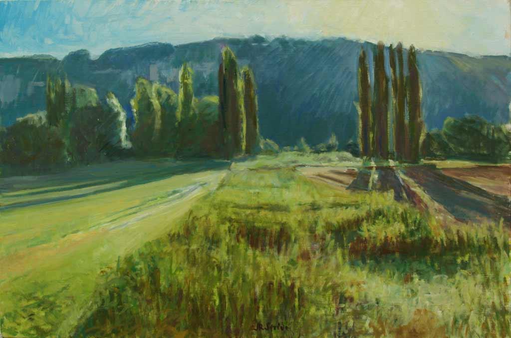 poplars_in_the_morning_light_65-46_small25